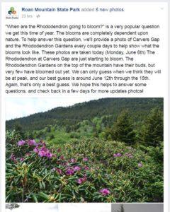 2016-June-6-bloom-report